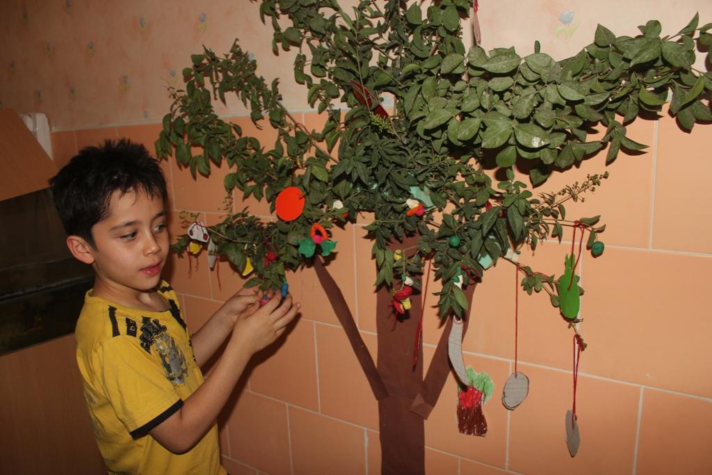 غرفه میوه های بوته ای و درختی