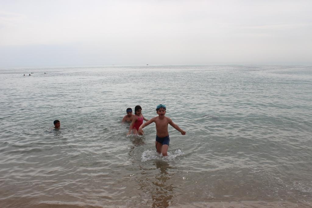 ساحل ریشهر 93.1.5